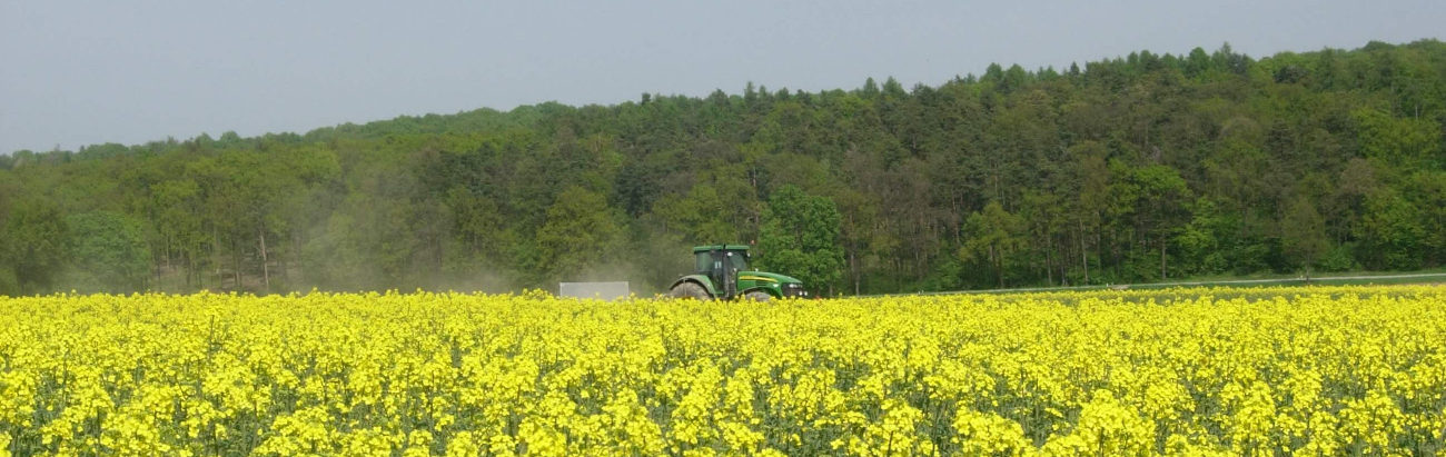 Courses for agricoltural authorities and schools | BeeSafe